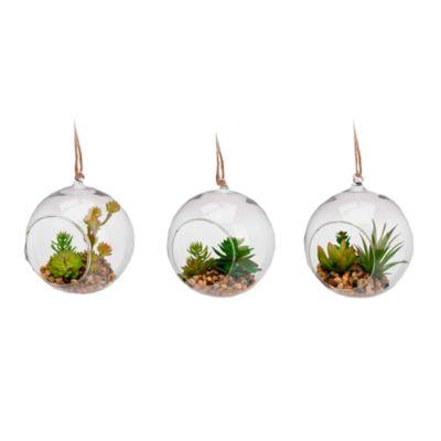 Colgador Maceta Cristal con Planta Interior 13cm
