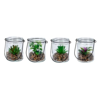 Terrario Vidrio con Planta Tipo Cactus 10cm