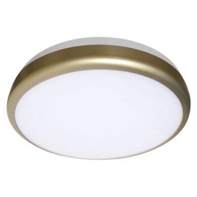 Plafón Led Circular 1 Luz 30W Luz Blanca