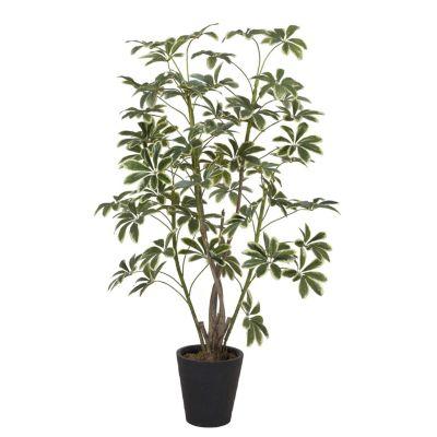 Planta Artificial Schefflera 172cm