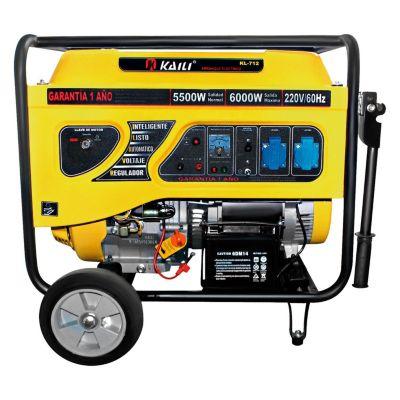 Generador a Gasolina 6000W