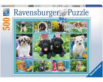 Rompecabezas 500 piezas Cachorros
