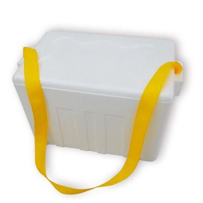 Caja Térmica de Tecnopor 21 Litros