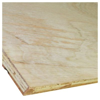 Compensado fenólico Eucaliptus 12 mm  244 x 122 cm C+C