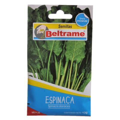 Semillas de hortaliza espinaca
