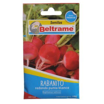 Semillas de hortaliza rabanito