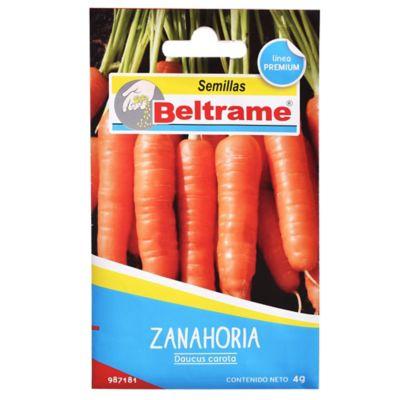 Semillas de hortaliza zanahoria