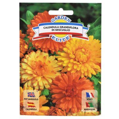 Semillas de flores caléndula