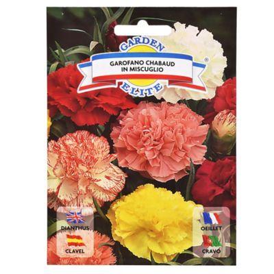 Semillas de flores clavel chabaud mix