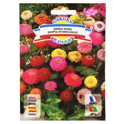 Semillas de flores zinnia mix