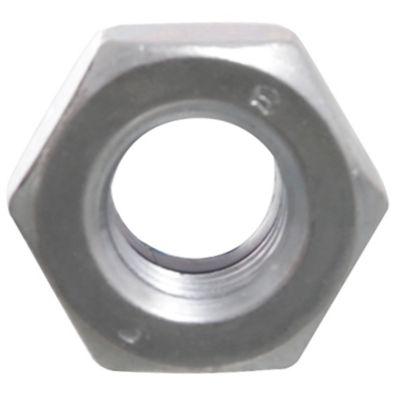 Tuerca hexagonal con Nylon M10 x 10 unidades