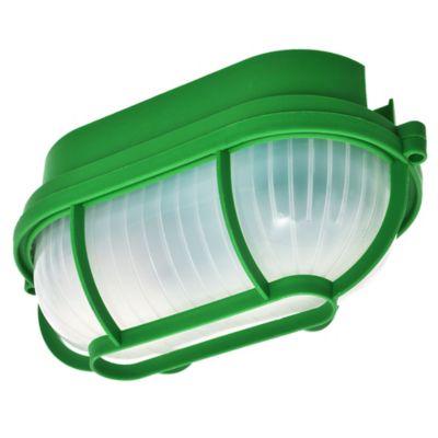 Tortuga de plástico oval verde