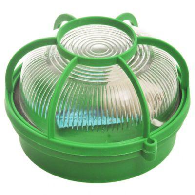 Tortuga de plástico y vidrio redonda verde