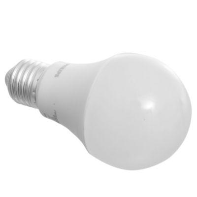 Lámpara de luz LED Ecoh 12 w E27 lf hv 1CT/20 A luz fría