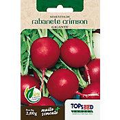 Semente Horta Rabanete Crimson Gigante
