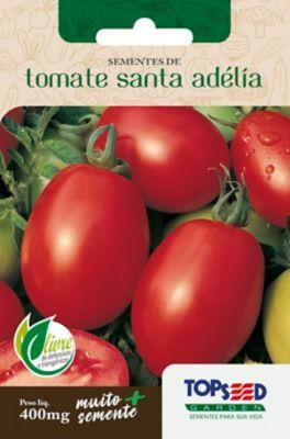 Semente Horta Tomate Santa Adélia