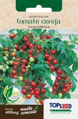Semente Horta Tomate Cereja Samam
