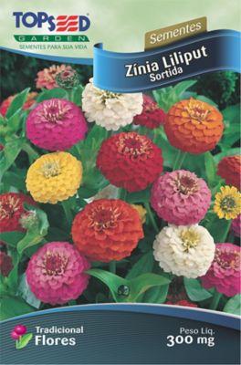 Semente Flor Zínia Liliput, Sortida