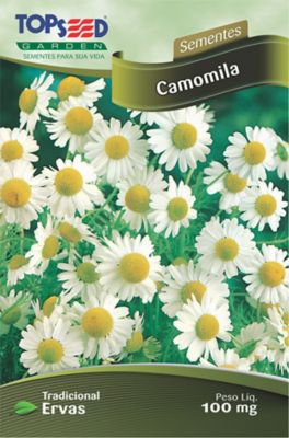 Semente Erva Camomila