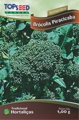 Semente Horta Brócolis Piracicaba