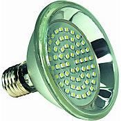 Lâmpada LED PAR30 Luz Branca 13W 6500K