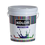 Tinta Fosco Interior Past Standard 18L Branco