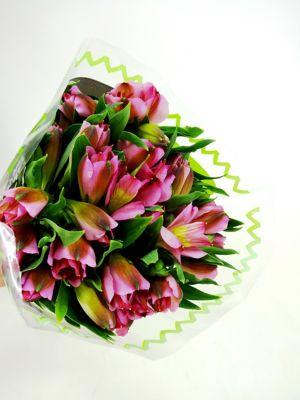Lírio Asiatico Flor Corte