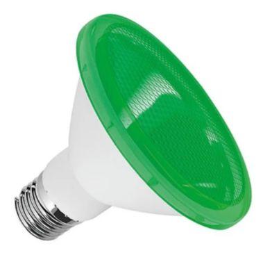 Lâmpada LED PAR30 IP65 Luz Branca Green Florest 10W Bivolt
