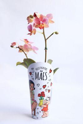 Orquídea Phalaeonopsis Mini Pt 06