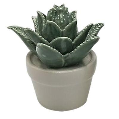 Mini Vaso Decorativo Suculenta Titubens Verde e Branco