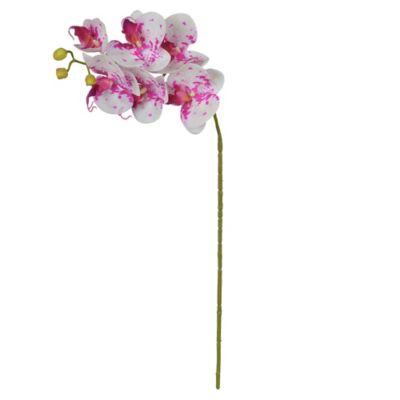 Haste Orquídea Phalaenopsis Real Toque X6 Rosa e Branco