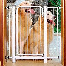 Proteção para Portas e Janelas