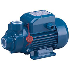 Electrobomba periférica 1 HP 40 l/min