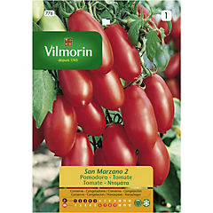 Semilla tomate san marzano 5 gr sachet