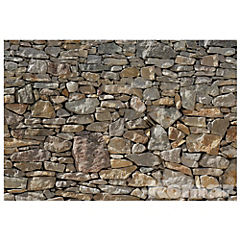 Papel fotomural Piedra 254x368 cm 8 paneles