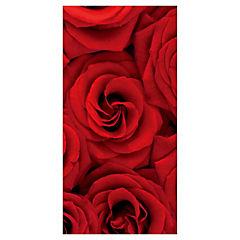 Cuadro concavo Rosa