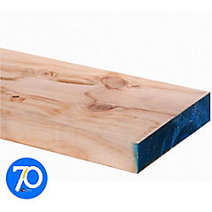 2x8'' x 4.8m Viga estructural de pino