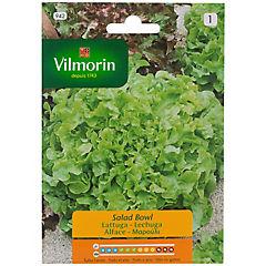 Semilla lechuga salad 8 gr sachet