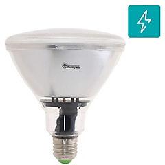 Ampolleta LED E-27 12 W Cálida