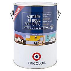Esmalte al agua semibrillo 1 gl Damasco light