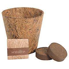 Kit para siembra biodegradable Pimentón