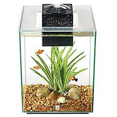 Acuario con accesorios 19 litros