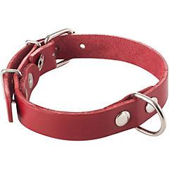 Collar para perro 40x2 cm de suela Rojo