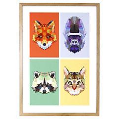 Cuadro 70x50 cm Animals II