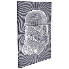Canvas Storm Trooper wire 60x80 cm