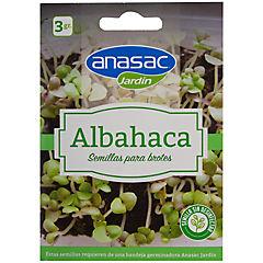 Semilla brote albahaca 3 gr sachet