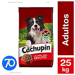 Alimento seco para perro adulto 25 kg carne