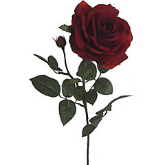 Vara rosa Anny 70 cm rojo