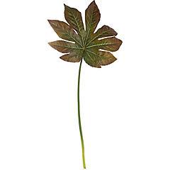 Vara Aralia 81 cm verde/café