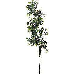 Hoja Aglaia 71 cm verde